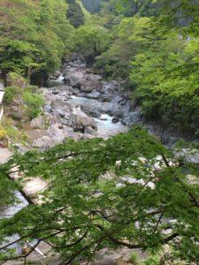 釣り場入り口上方から川を望むj